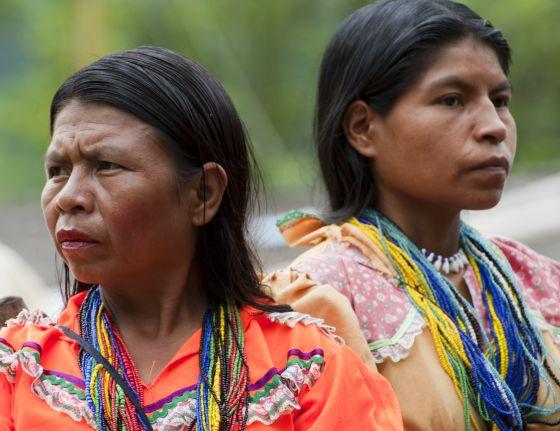 Embera chami