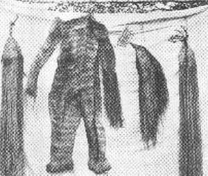 kayapo y mas