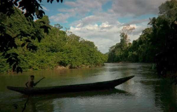 Yanomami y mas